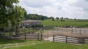 农场的轻率冒险 库存照片