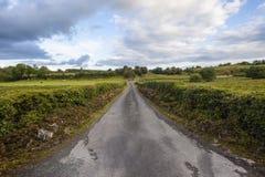 农场马路横向爱尔兰 免版税图库摄影