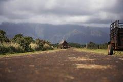 农场马路-考艾岛,夏威夷 免版税库存照片