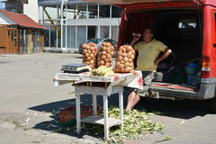 农场主销售播种在他的汽车外面后车箱  库存图片