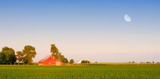 农场 库存照片