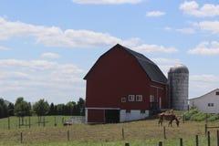 农场 免版税库存照片