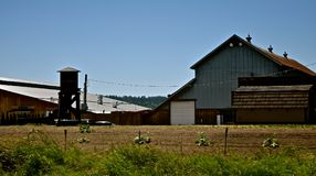 农场2 库存图片