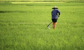 农夫与在耕种领域用小锄头 免版税库存照片