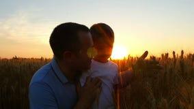 农夫人和他的儿子在日落背景中满意对麦子收获,在领域  爸爸和 影视素材