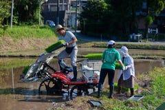 农夫他的种植米的日本装载橡皮防水&# 免版税库存图片