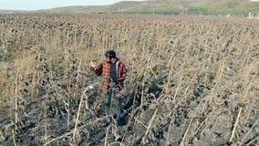 农夫在与死的植物的一个领域站立 损坏的庄稼概念 股票视频
