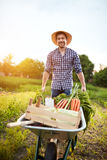 农夫在有独轮车的庭院里 免版税库存照片