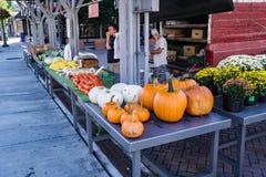农夫在罗阿诺克市市场上 免版税图库摄影