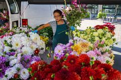 农夫在罗阿诺克市市场上 免版税库存照片