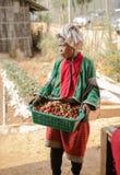 农夫在草莓种植园工作 库存照片