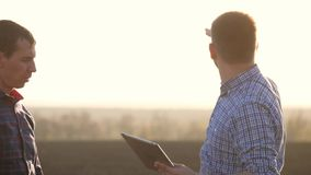 农夫在麦田工作,传达,看片剂 两位农夫在领域谈话,使用片剂 影视素材