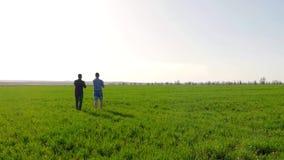 农夫夫妇领域的使用数字式片剂 两站立在领域和看片剂的农夫 他们是 股票录像