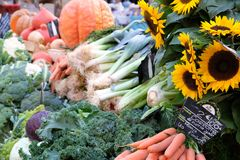 农夫市场摊位有菜和sunflow的普罗旺斯法国 库存照片