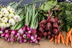从农夫市场的混杂的菜 免版税库存照片
