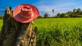 农夫帽子 库存照片
