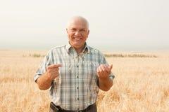 农夫愉快的前辈 免版税库存图片