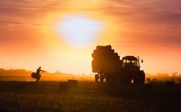农夫投掷在牵引车拖车的干草捆 免版税库存照片