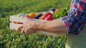 农夫拿着有菜的一个箱子 免版税库存照片