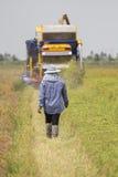 农夫收获 免版税库存照片