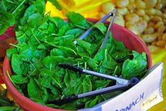 农夫新鲜市场菠菜 免版税库存图片