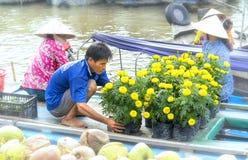 农夫是运输,在船上安排罐万寿菊花 库存图片