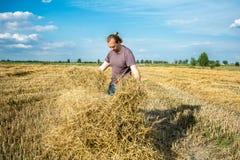 农夫检查秸杆的质量 图库摄影