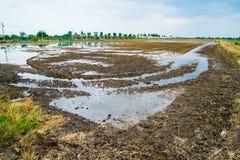农夫用途拖拉机地面为种植做准备 免版税库存照片