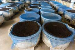 农夫的蠕虫农场能使用做好土壤 库存照片