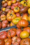农夫祖传遗物市场有机蕃茄 库存图片