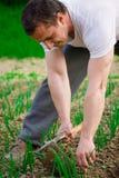 农夫运作的年轻人 免版税图库摄影