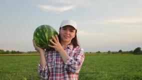 农夫运载在她的肩膀的一个成熟西瓜 股票录像