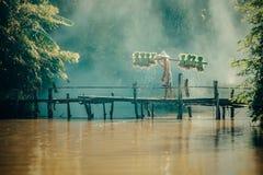 农夫运载在肩膀的米幼木在雨季 库存图片
