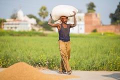 农夫运载在他们的袋子顶头 库存图片