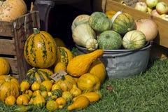 农夫销售卖南瓜和金瓜 库存图片