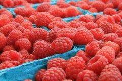 农夫销售红色有机的莓 免版税库存照片