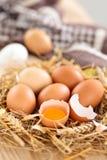 农夫鸡蛋 库存图片