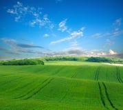 农村农业风景,在背景天空的绿色领域 免版税库存照片