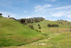 农村农田,新南威尔斯,澳大利亚 图库摄影