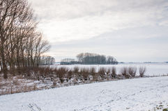农村冬天横向在荷兰 库存图片