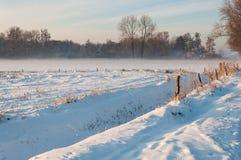 农村冬天横向在荷兰 库存照片