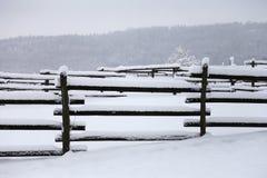 农村动物农场水平的冬天landsape  免版税库存照片