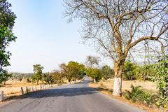 农村印地安人艰难沥青路高速公路通过在双方森林红色土壤的树遇见天空天际直接 免版税图库摄影