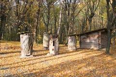 农村古老蜂房秋天蜂庭院的横向 免版税库存图片