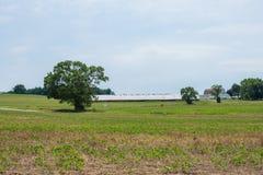 农村国家约克县宾夕法尼亚农田,在一个夏日 库存图片