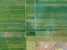 农村在内地农业区域的 免版税库存照片