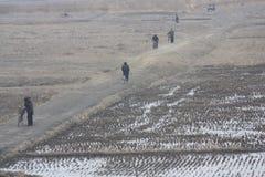 农村场面在北朝鲜DPRK 库存照片