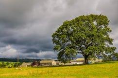 农村场面在Cumbria 免版税库存图片