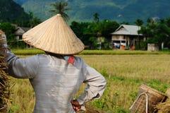 农村场面越南 免版税库存图片