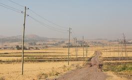 农村埃塞俄比亚农场土地干燥风景 免版税库存照片